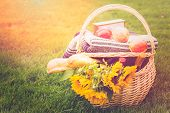 image of food plant  - Summer picnic with a basket of food in the park - JPG