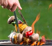 picture of braai  - Tasty skewers on the grill - JPG