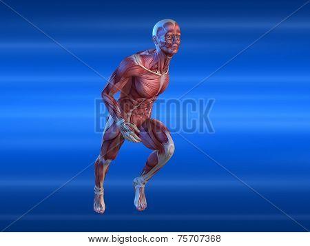 male sprinter