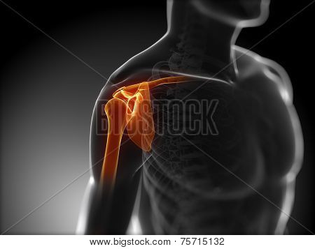 3d rendered medical illustration - painful shoulder