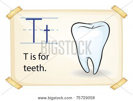 A letter T for tooth on a white background