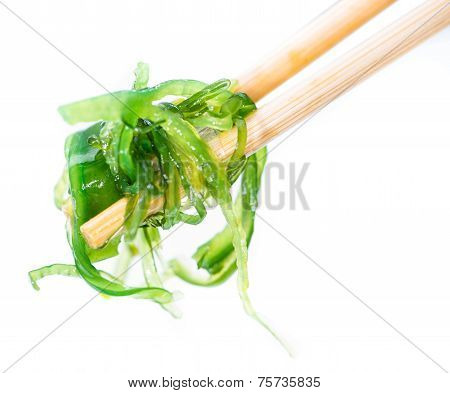 Kelp Salad Isolated On White