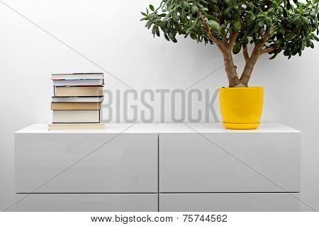 White Commode With Stack Of Books And Flower Pot In Bright Minimalism Interior