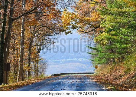 Asphalt road into autumn foliage - Shenandoah National Park, Virginia United States