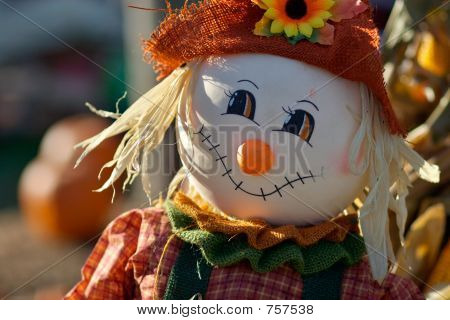 Little cute scarecrow