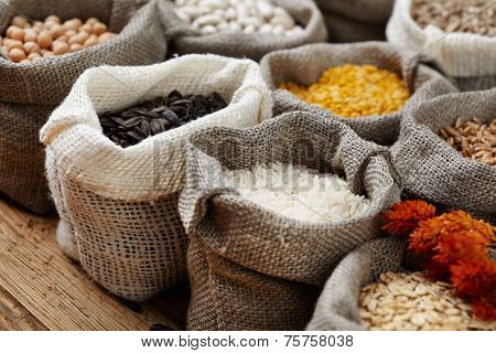 Corn kernel seed meal and grains in bags isolated on a wood table