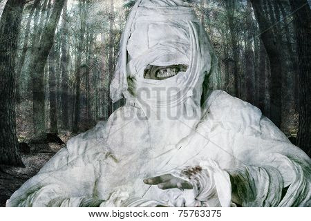 terrible mummy in forest background