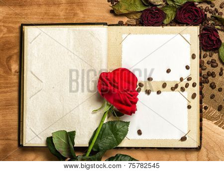 photo album and red roses on coffee seeds