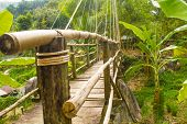 picture of bondage  - Wooden bridge with rope bondage in Vietnamese forest - JPG