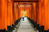 stock photo of inari  - Man walking in the Fushimi - JPG