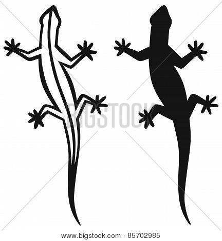 Silhouette lizard