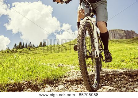 Mountain Biker Riding Trail