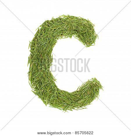Green Alphabet, Letter C