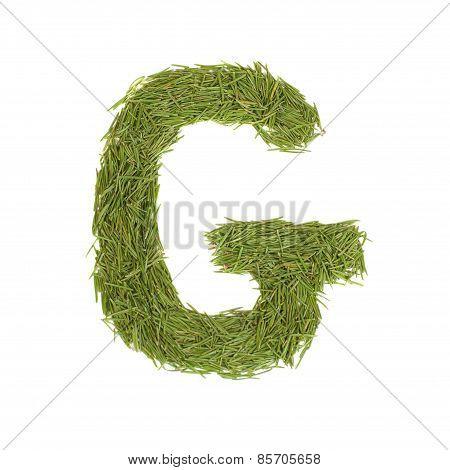 Green Alphabet, Letter G