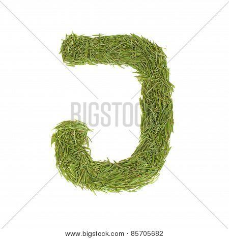 Green Alphabet, Letter J