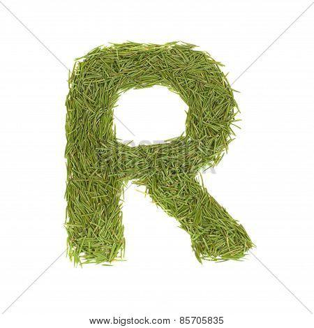 Green Alphabet, Letter R