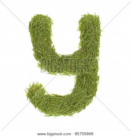 Green Alphabet, Letter Y