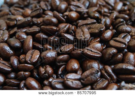 Close Up of Arabica Coffee Beans - Screen Fill
