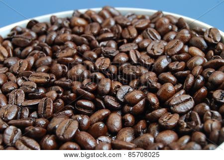 Arabica Coffee Beans in White Bowl Against a Blue Background