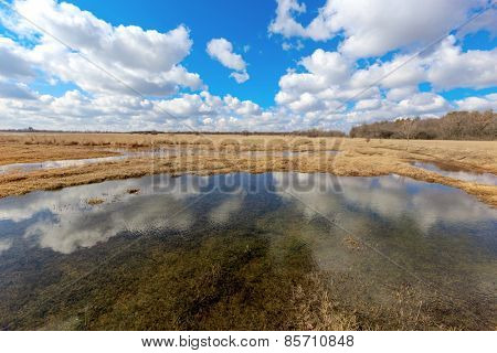 Small lake on meadow at a nice spring day