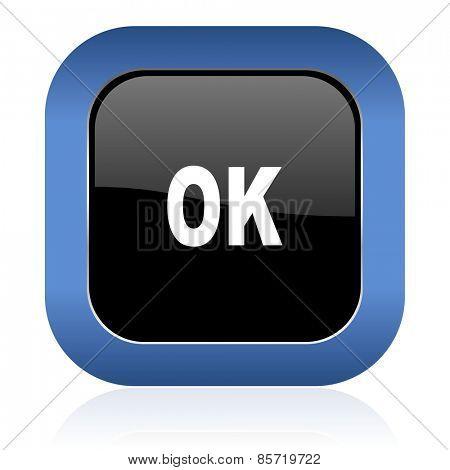 ok square glossy icon