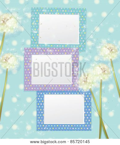 Vector colorful empty photo frames and dandelion flowers.