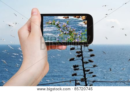Tourist Photographs Of Mediterranean Sea, Spain