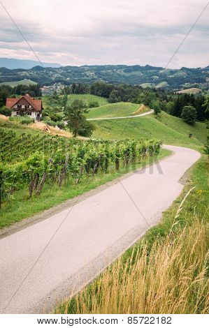 Wine Route in Southern Styria