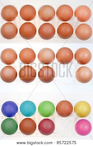 Set Of Chicken Eggs In Holders