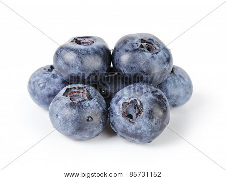 fresh wet blueberries isolated