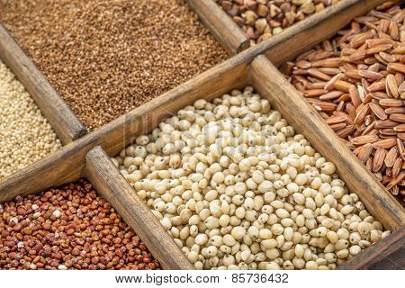 sorghum and other gluten free grains in a wooden rustic box