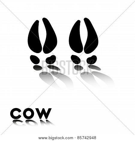 Cow's Paw Prints