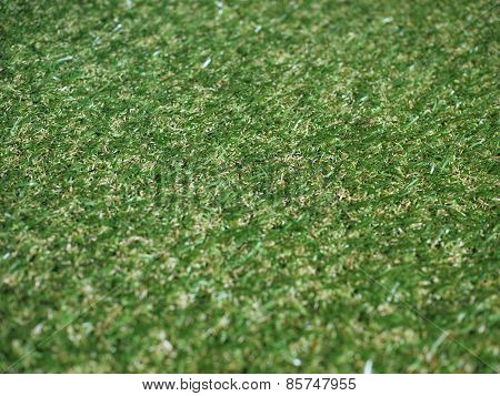 Green Artificial Synthetic Grass Meadow Background