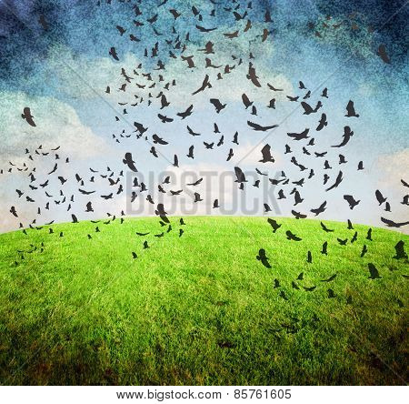 image from old paper and clouds texture series with birds and sky and grass background