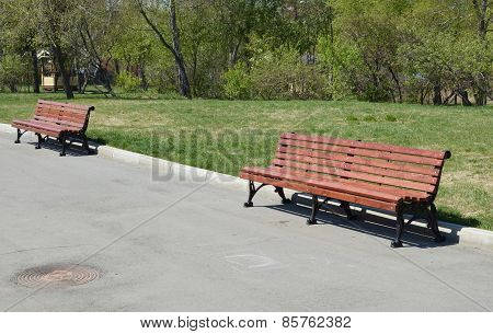 Two wooden benches in the park alley