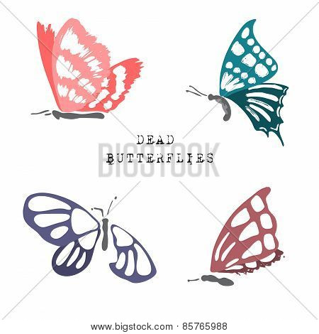 Set of dead butterflies