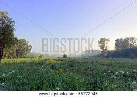 Beautiful Summer Foggy Landscape
