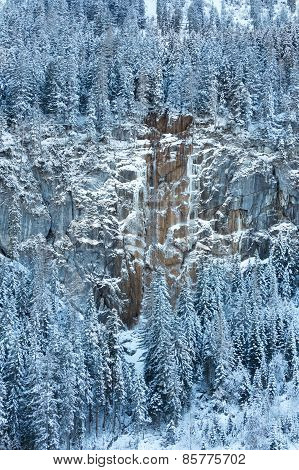Snowy Fir Trees And Frozen Waterfall