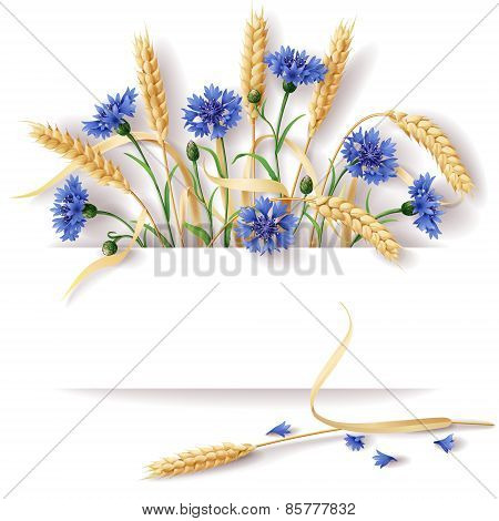 Wheat Ears And Cornflowers