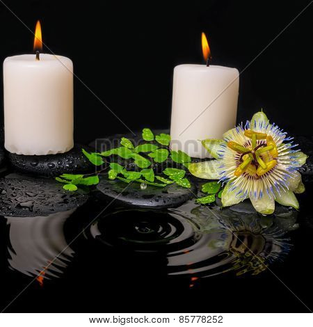Spa Still Life Of Passiflora Flower, Green Leaf Fern With Drop And Candles On Zen Stones In Ripple R