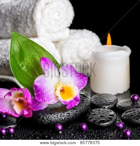 Spa Background Of Orchid Dendrobium, Green Leaf Calla Lily, Candle, Towels And Beads On Zen Stones W