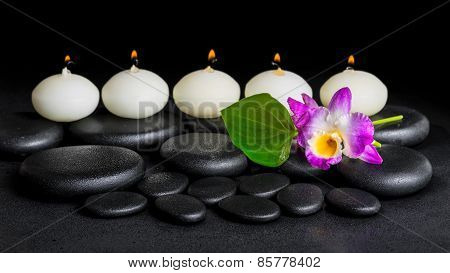 Spa Concept Of Orchid Flower Dendrobium, Green Leaf Calla Lily And Row Candles On Zen Stones Backgro
