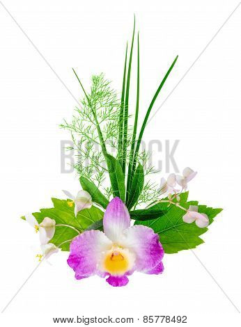 Composition Of Exotic Flowers Bouquet Is Isolated On White Background