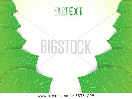 Background Text Leaves V1