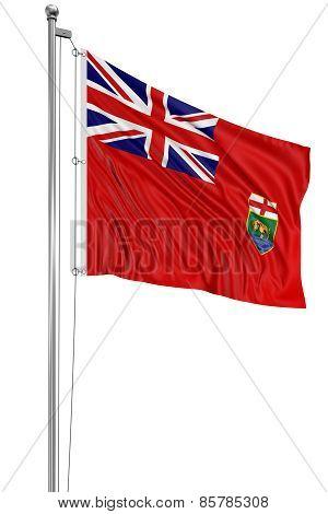 3D Manitoba  Flag