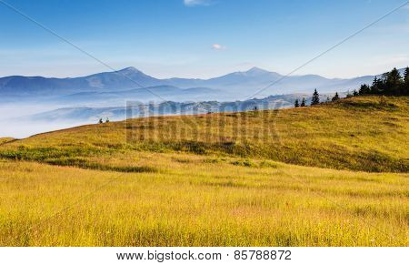 Fantastic day and bright hills by sunlight. Dramatic morning scenery. Carpathian, Ukraine, Europe. Beauty world.