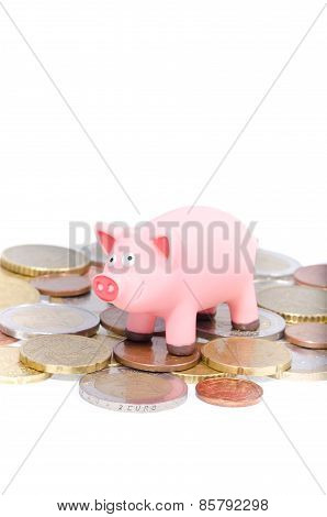Pig On Coins