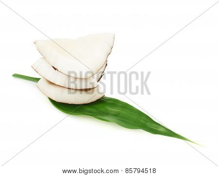 Coconut over the palm leaf