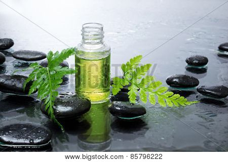 fern, oil , black stones , preparing for massage