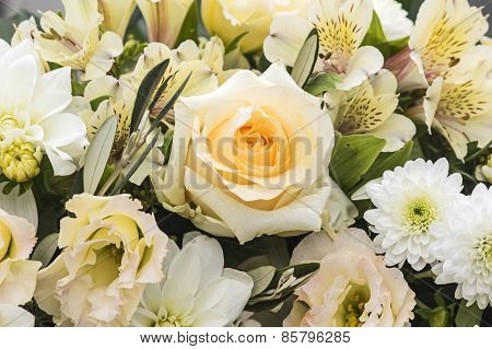 Rose and freesia